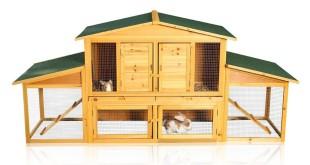 Kaninchen kaufen der kaninchenstall