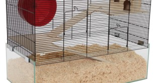 Hamsterkäfig kaufen 5